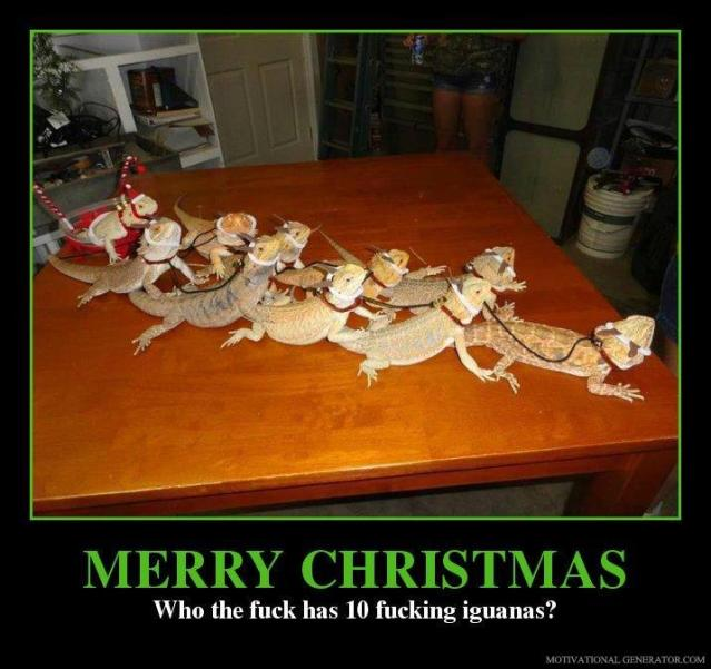 merry-christmas-who-the-fuck-has-10-fucking-iguanas-6f55a4